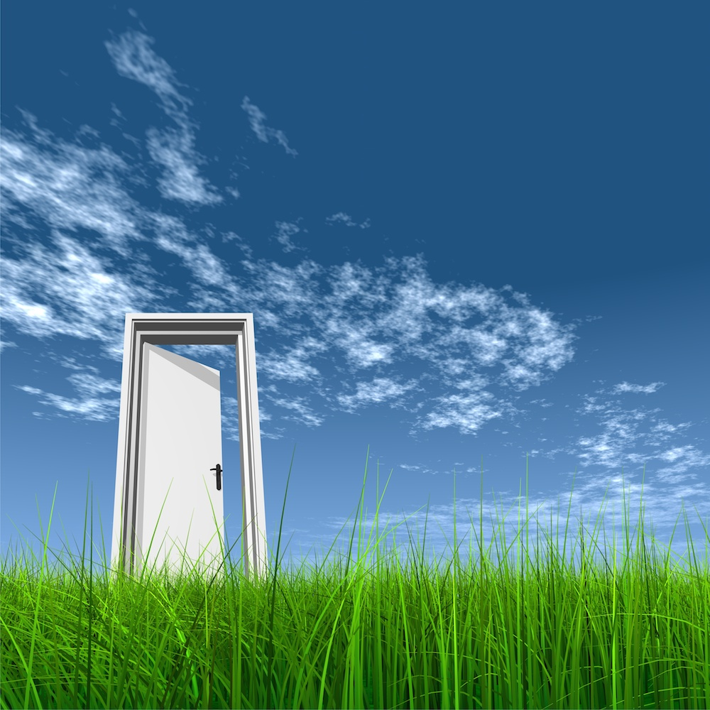 Door opened in grass to the sky, (c) Fotolia/high_resolution, #23298587